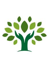 Hand natural Tree