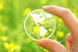 Fototapety Glass earth in flowers