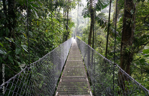 Suspended Bridge at La Fortuna