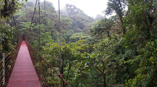 Suspended Bridge at Monteverde