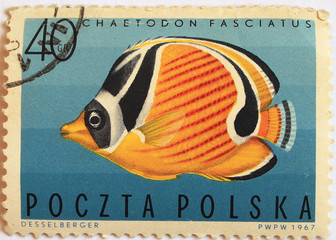 """postal stamp - set with fish"""