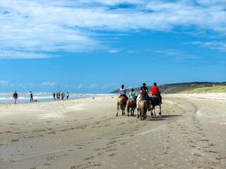 cheval plage