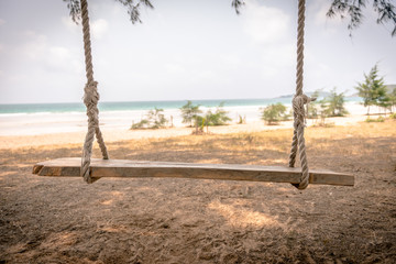 Swing hang from tree over beach