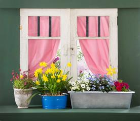 Altes Holzfenster mit Frühlingsblumen