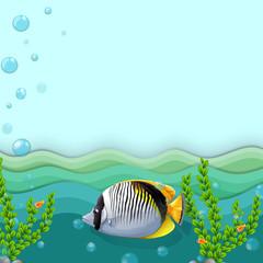 A fish under the sea