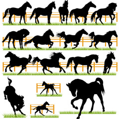 Set of 17 Vector Horses Silhouettes