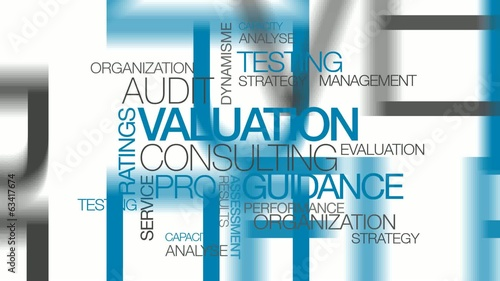 Valuation consulting expertise audit word tag cloud animation