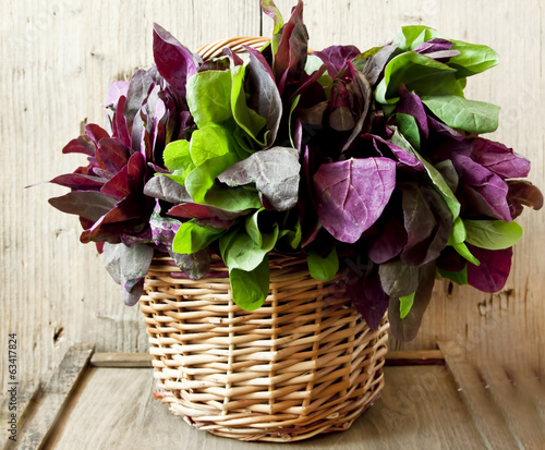 Orach Basket