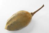 Frutto del baobab (Adansonia digitata)
