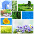 Collage of beautiful nature
