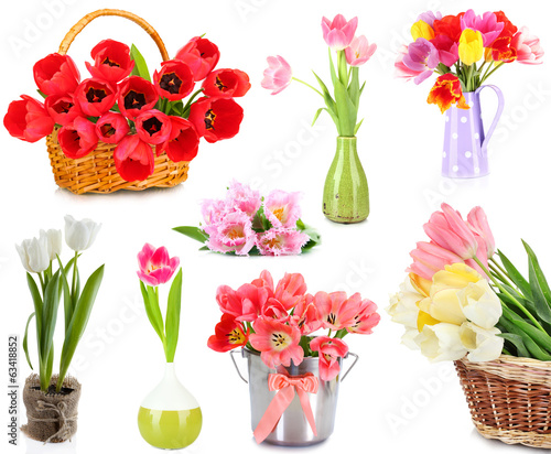 Collage of beautiful tulips isolated on white