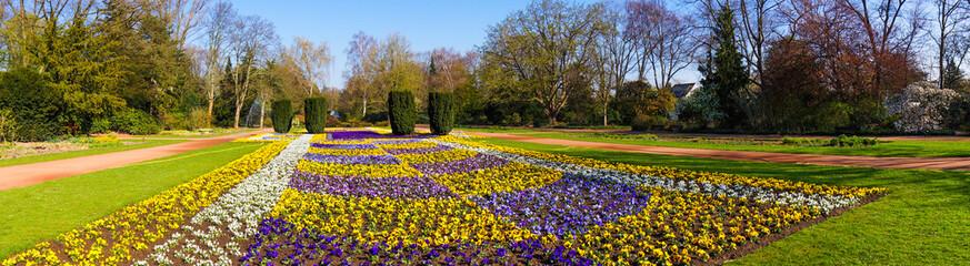 spring landscape. beautiful garden