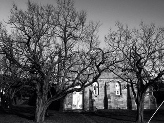 Old church and big beautiful trees