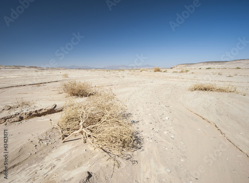 Barren desert landscape in hot climate