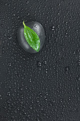Zen  stone  and leaves with water drops