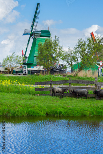 dutch windmills over  river