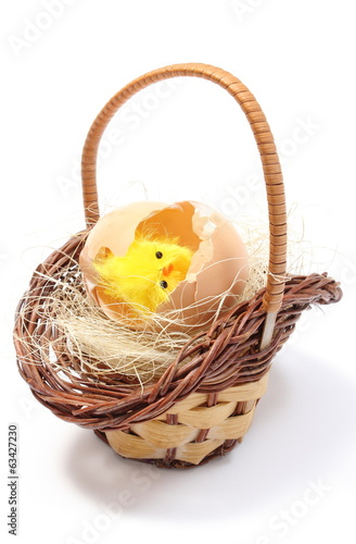 Easter chicken in wicker basket and broken eggshell
