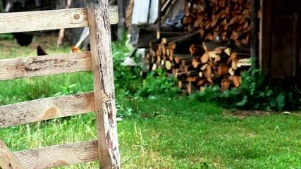 Деревенское подворье в Беларуси