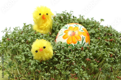 Easter chickens and painted egg on fresh green watercress
