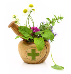 Wooden mortar with pharmacy cross and fresh herbs