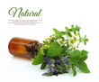 Fresh herbs in a medical bottle - 63429639
