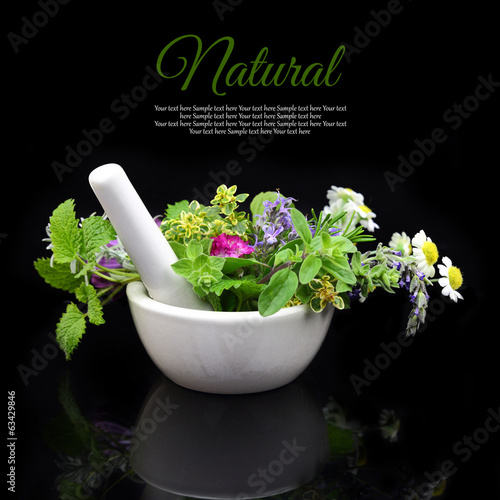 White porcelain mortar and pestle with fresh herbs