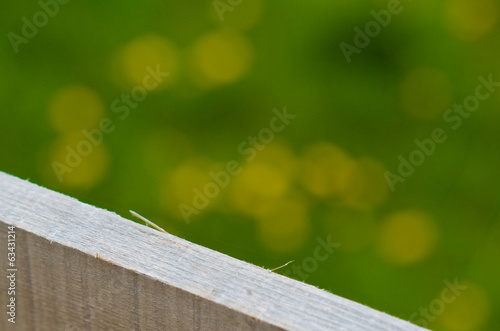 A detail of wooden plank over bokeh natural background