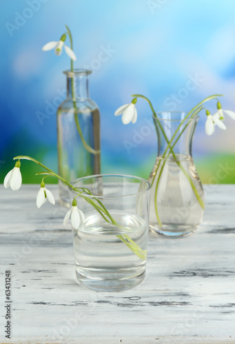 Beautiful snowdrops in vases on nature background