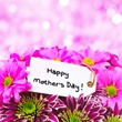 Happy Mothers Day tag with flowers and pink background