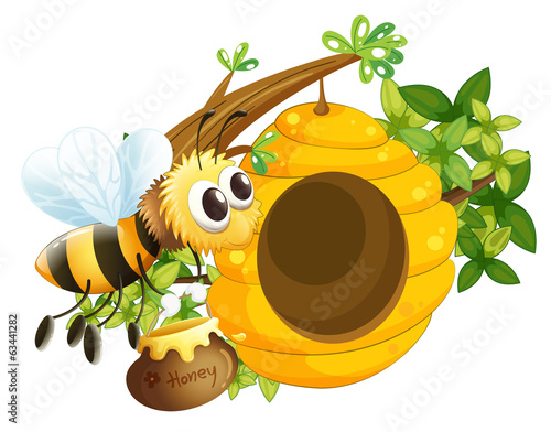 A bee near the beehive