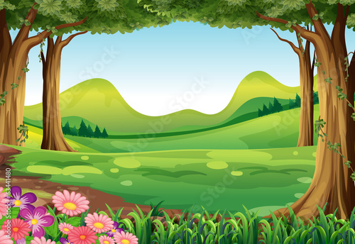 A green forest - 63441480