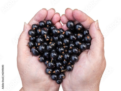 Black currants held by hands shaping a heart  isolated on white