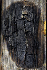 Texture of wood burned