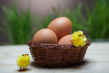 Easter still life with grass, chickens and eggs in a bascet.