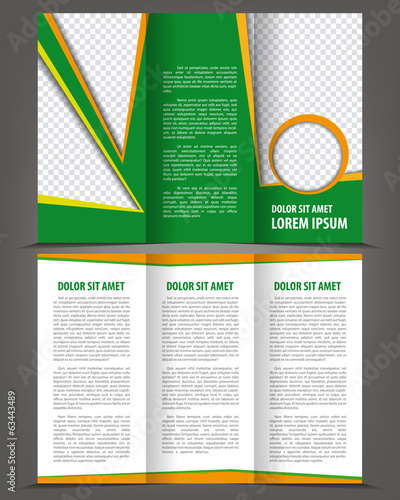 Vector empty trifold brochure print template eco design