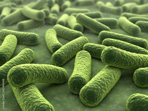 Bakterien 3D - 63445449