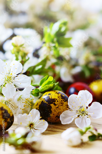 Easter eggs, flowers and fruit trees
