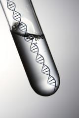 DNA実験イメージ