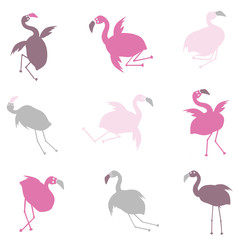 Personnages humoristiques flamants roses 2
