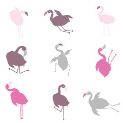 Personnages humoristiques flamants roses