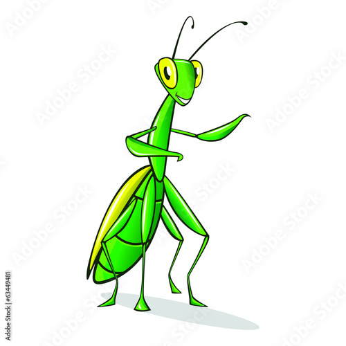 Cartoon Mantis