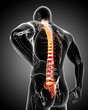 Anatomy of male back pain in black - 63451447