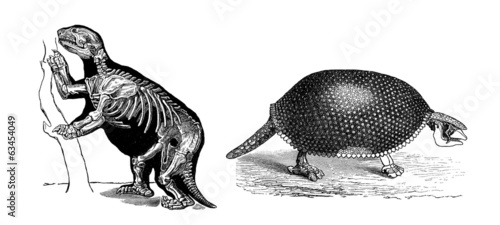 2 Prehistoric Animals