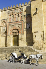 Horse carriage front mosque of Cordoba. Andalusia, Spain.