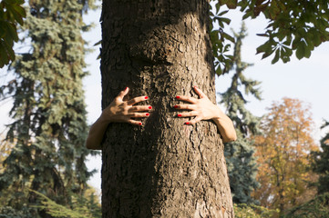 female hands hugging a tree