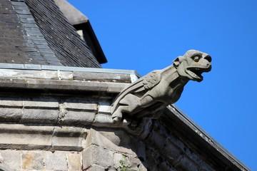 Gargouille de la Cathédrale Ste Waudru de Mons ( Belgique )