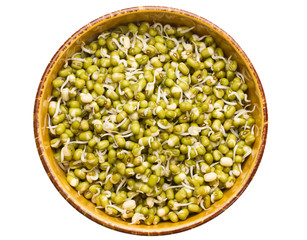 Mung beans sprouts