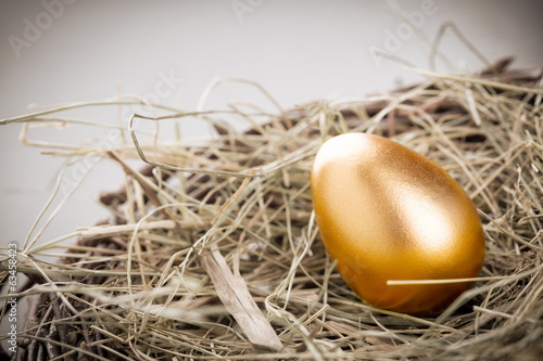 canvas print picture Gold Egg