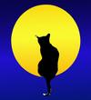 Il Gatto e la Luna piena