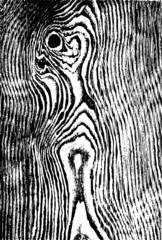 Black and white wood grain texture design.